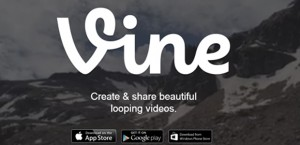VineArticleHead