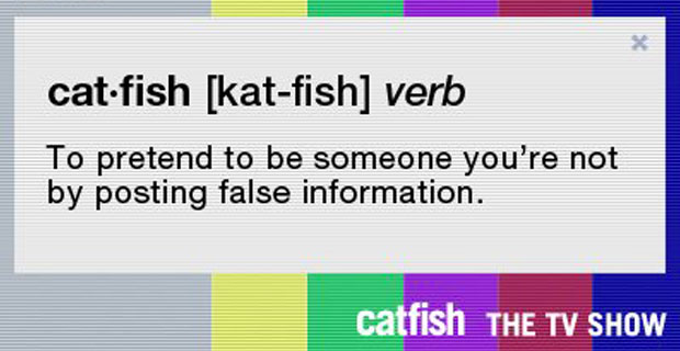 Internet catfish definition